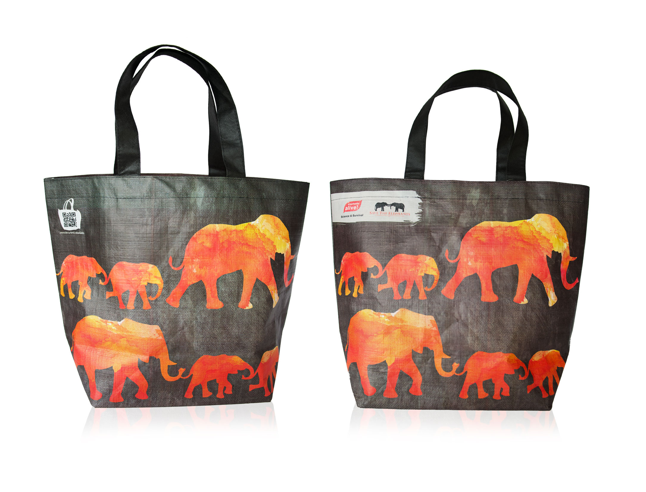 Wild-about-elephants-pack-shot