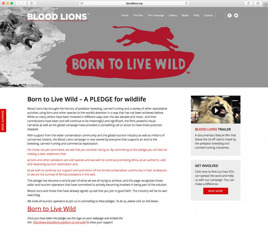 SS-blood-lions