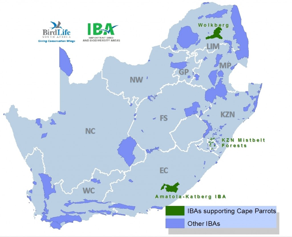 IBA Map